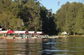 Resorts For A Perfect Romantic Sojourn In Ooty