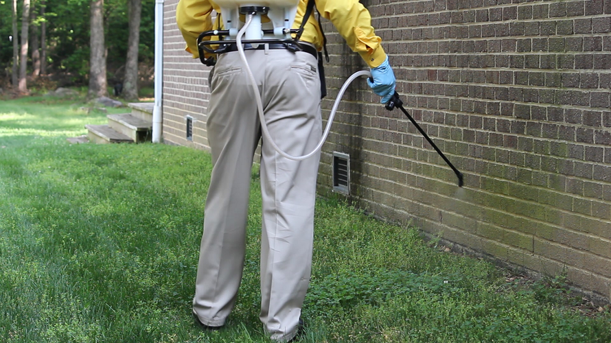 Selecting A Pest Control Provider In Hertfordshire